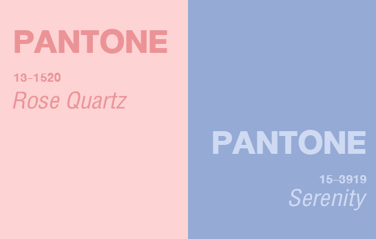 Pantone,Color 2016,Pantone 2016,NYFW Fall 2016,เทรนด์สี 2016,Graphic Design,เรียน Graphic Design,เรียน Photoshop,เรียน Illustrator
