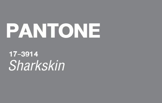 Pantone,Color 2016,Pantone 2016,NYFW Fall 2016,เทรนด์สี 2016,Graphic Design,เรียน Graphic Design,เรียน Photoshop,เรียน Illustrator