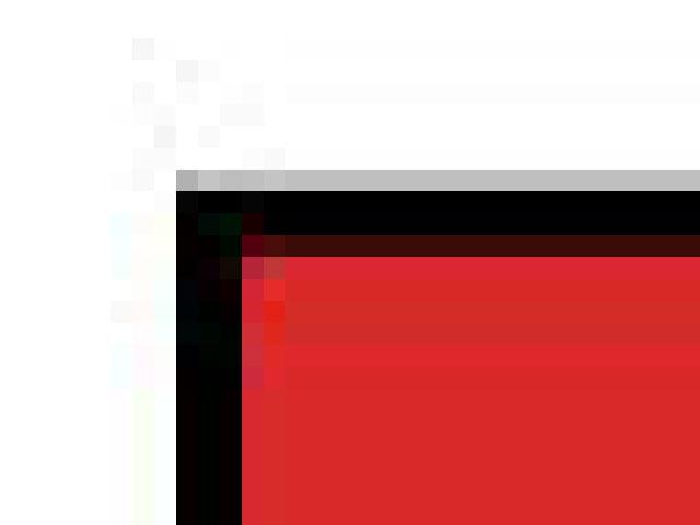 ภาพเวกเตอร์,ภาพบิทแมพ,ภาพ Vector,ภาพ Bitmap,Vector คืออะไร,Bitmap คืออะไร,Graphic Design,เรียน Graphic Design,เรียน Illustrator,เรียน Photoshop