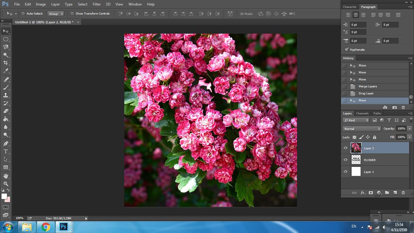 Graphic Design,กราฟิก ดีไซน์,เรียน Graphic Design,เรียน Infographic,เรียน Illustrator,เรียน Photoshop,Social Media Marketing,Graphic Design Tips,เทคนิค Graphic Design,การใช้ฟ้อนต์,ฟ้อนต์,เทคนิคการใช้ฟ้อนต์,font,เทคนิคการใช้ font,ใส่ภาพในตัวอักษร photoshop
